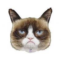 Сердитая Кошка в колпаке